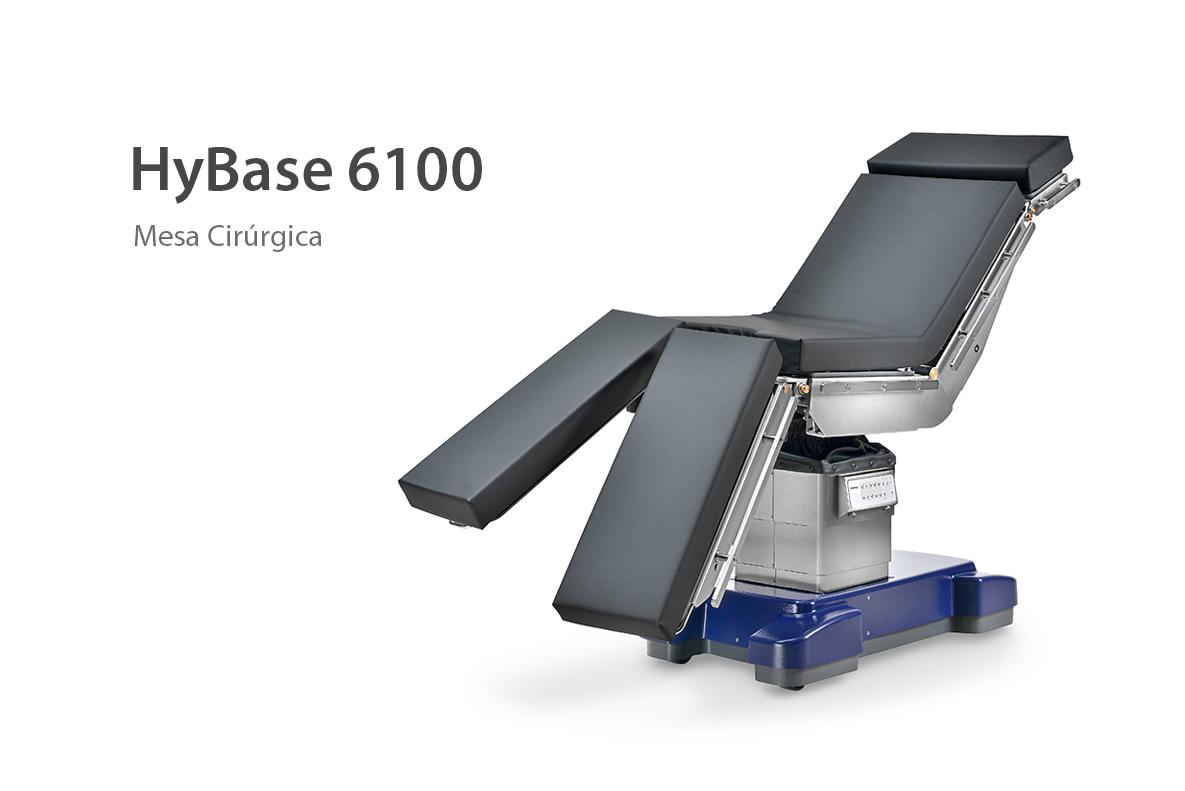 HYBASE 6100 1 - HYBASE 6100_1